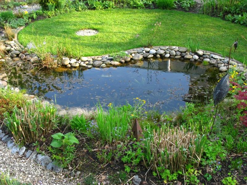 Ellen 39 s tuin for Natuurlijke vijver zonder pomp