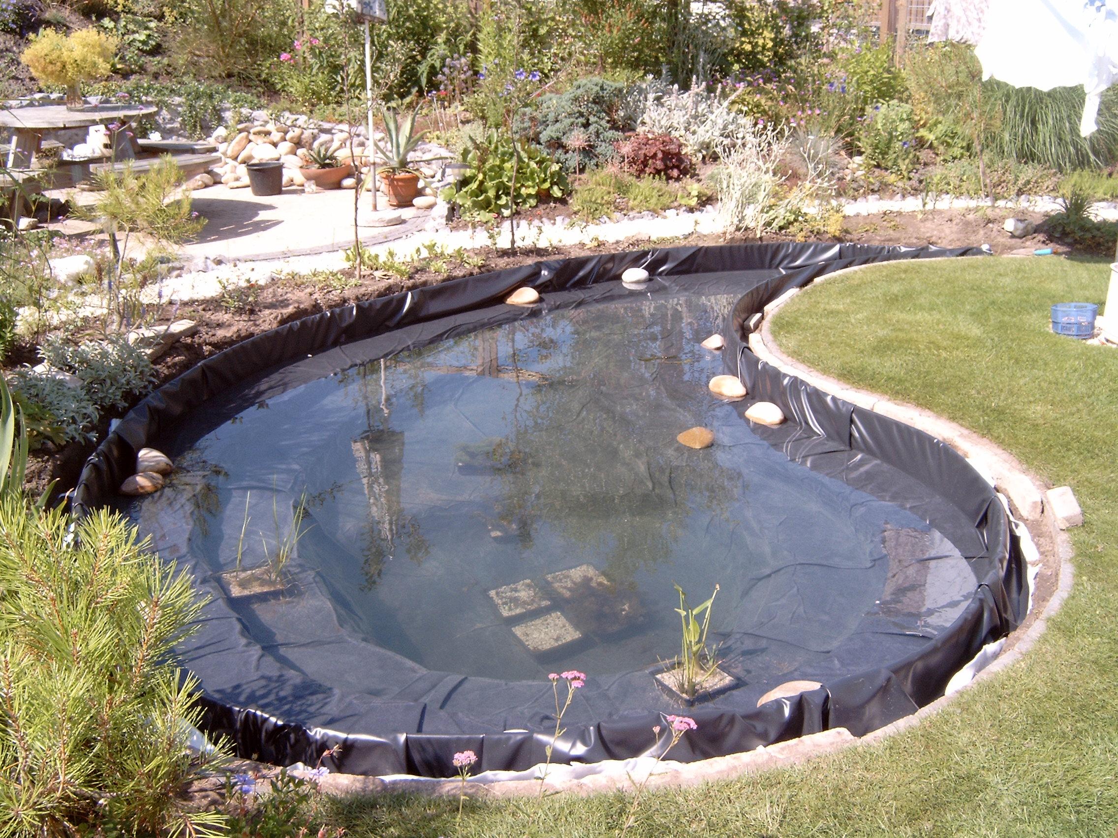 Ellen 39 s tuin for Koivijver aanleggen tips