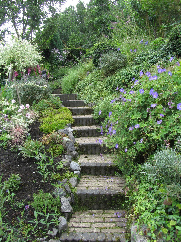 Ellen 39 s tuin for Beneden tuin